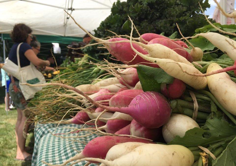 No EG Farmers Market This Year