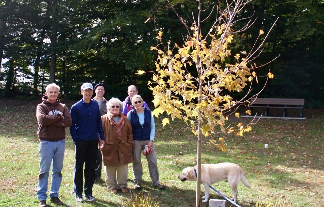 New Tree at EGHS for Michael O'Neill (1978-95)